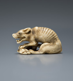 Ivory netsuke of a wolf with haunch of venison