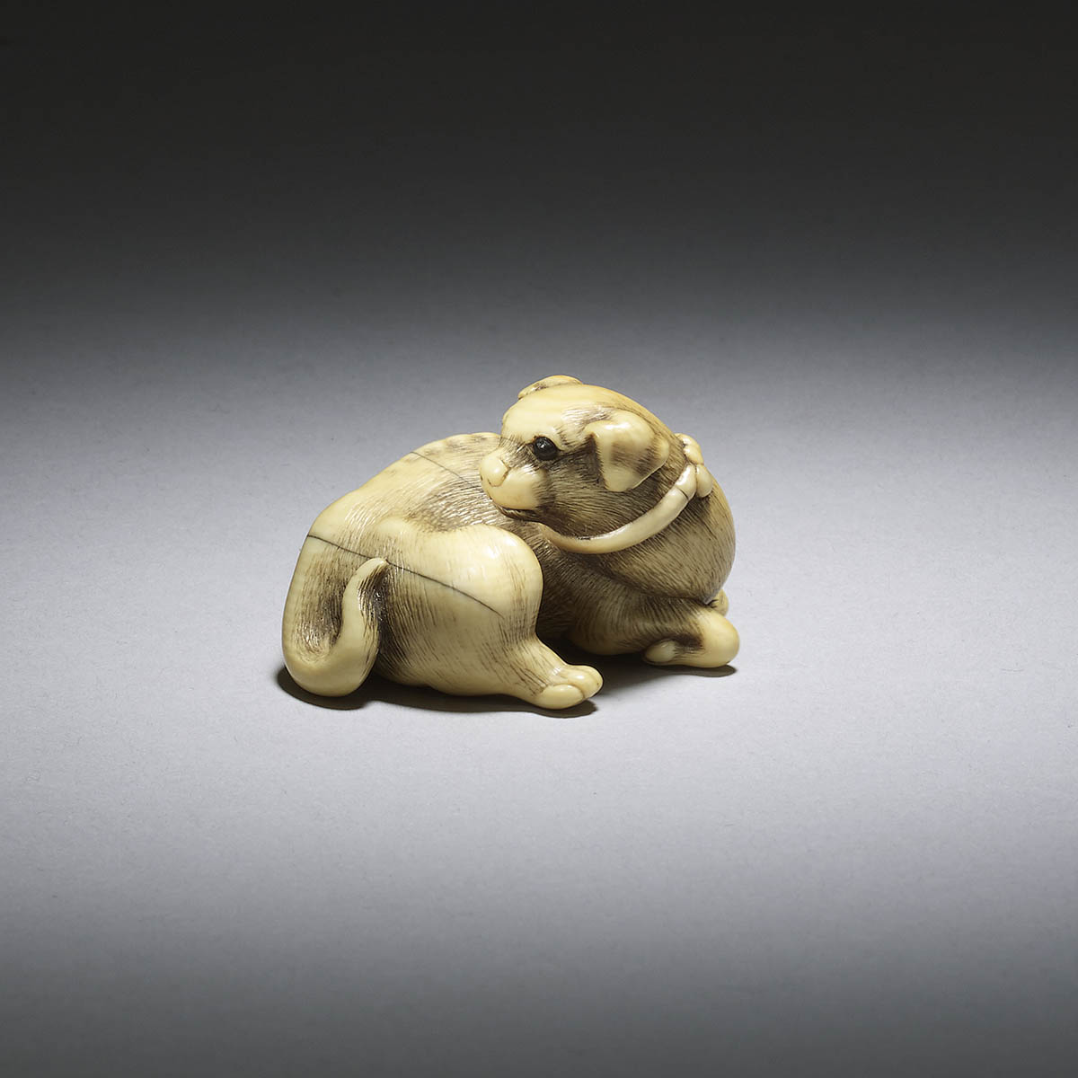 Ivory netsuke of a dog
