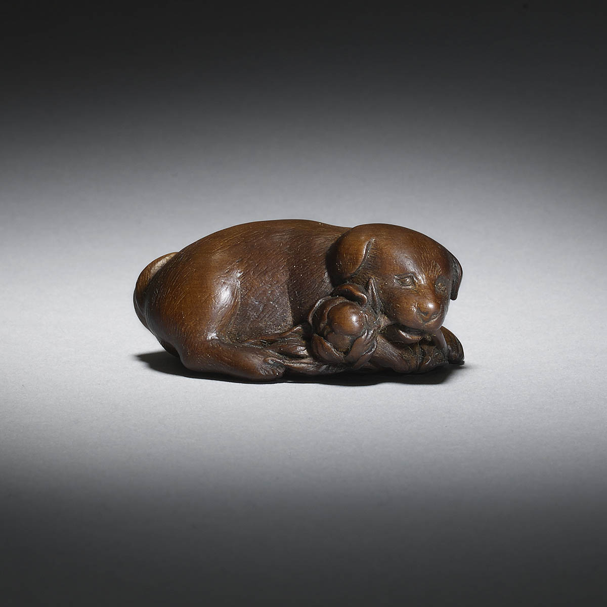 Boxwood netsuke of a dog by Shugetsu I