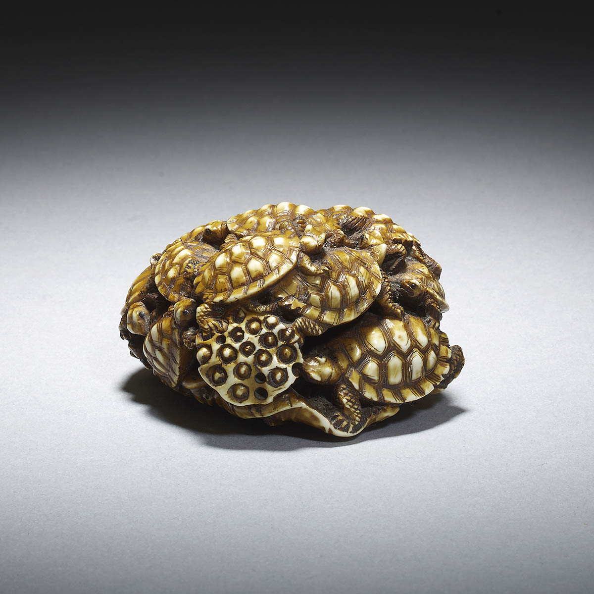 Dark stained ivory netsuke of turtles