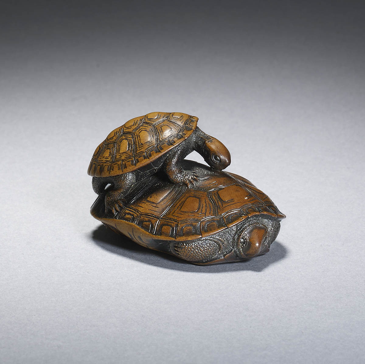 Wood netsuke of two turtles by Kano Tomokazu