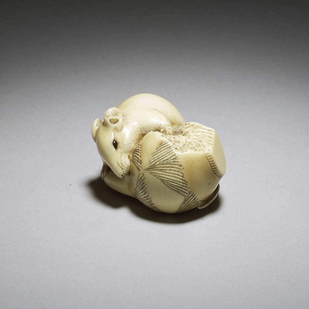 Rantei, ivory netsuke of a rat