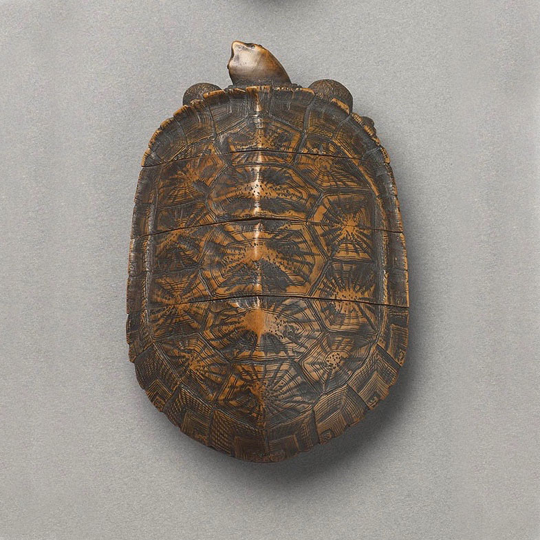 WOOD THREE CASE INRO IN THE FORM OF A TURTLE