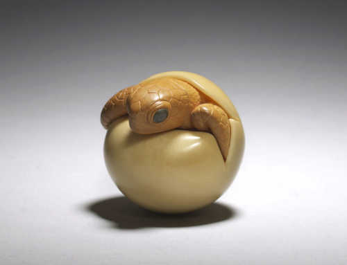 **SOLD** Boxwood and corozo nut netsuke of a hatching turtle