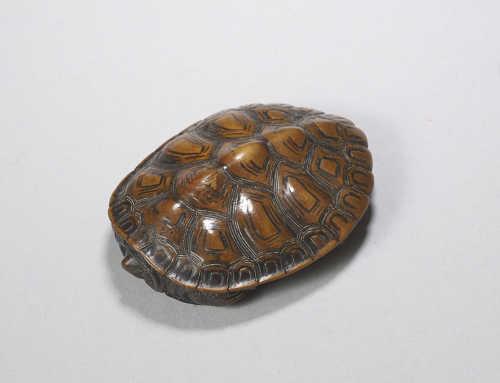 Wood netsuke of a turtle