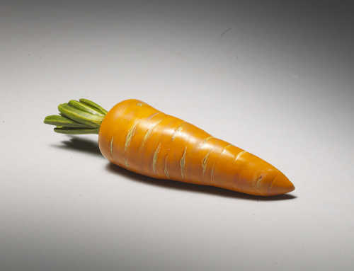 Ivory okimono of a carrot