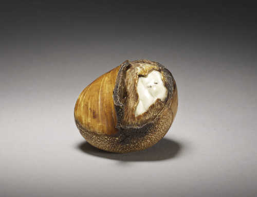 A life size ivory okimono of a roasted chestnut