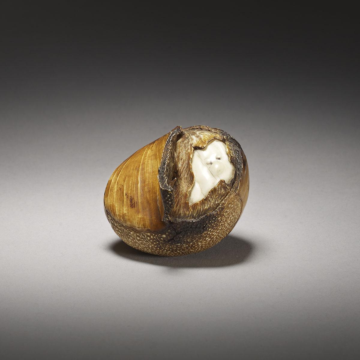 Rokuzan, a life size ivory okimono of a roasted chestnut