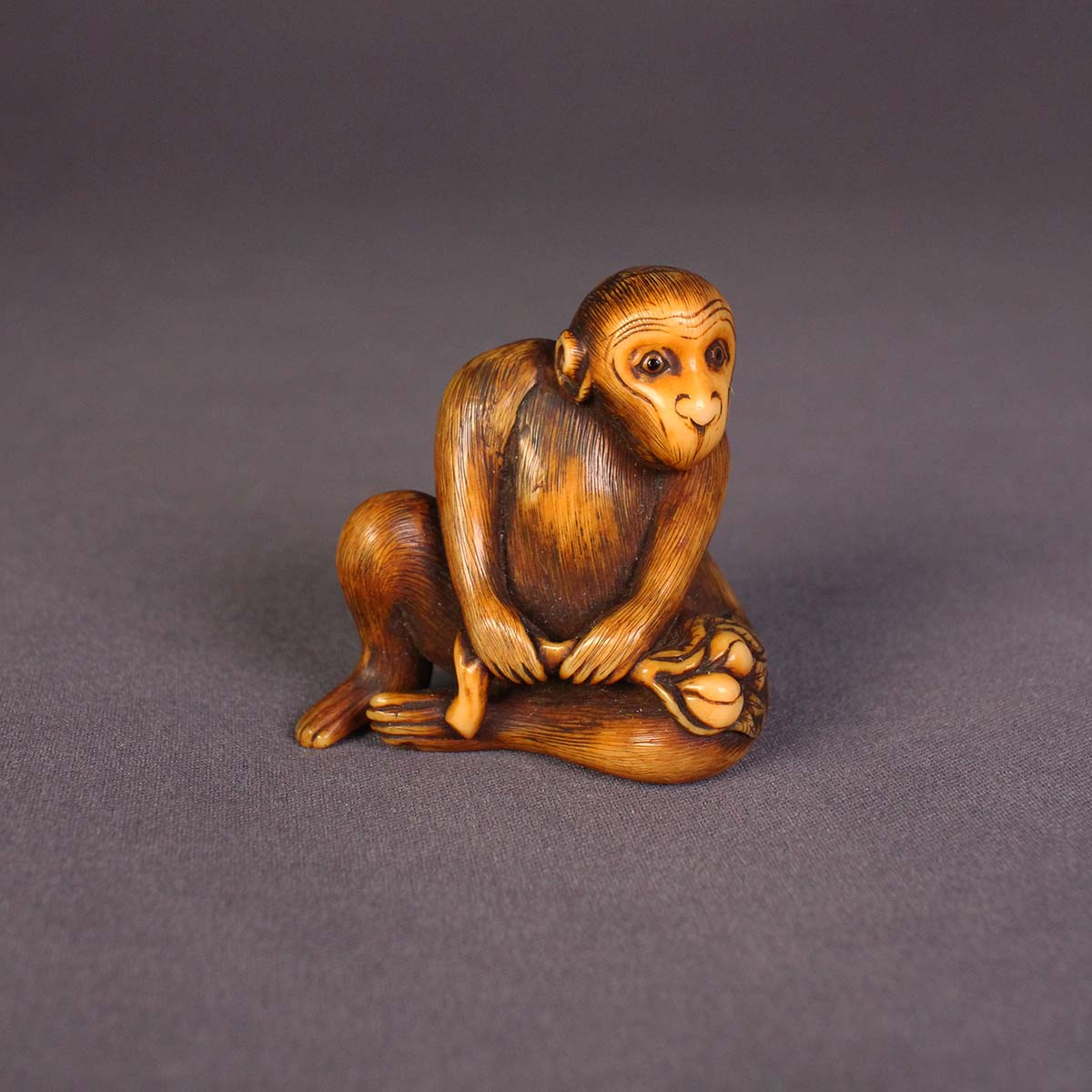 Mitsuharu, dark stained ivory netsuke of a seated monkey_ MR2859