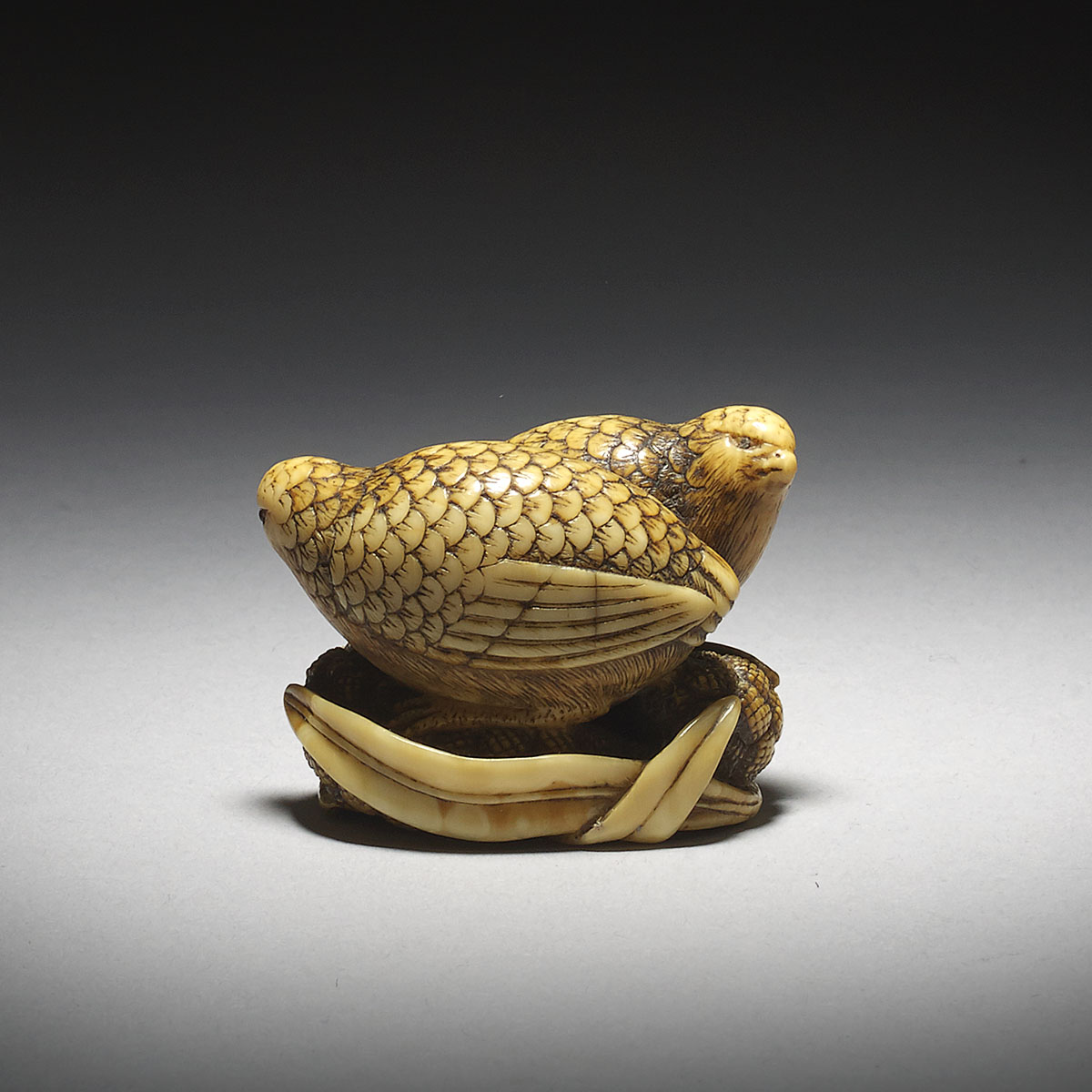 Dark Stained Ivory Netsuke of a Pair of Quails on Millet by Okatomo_MR2917_v1