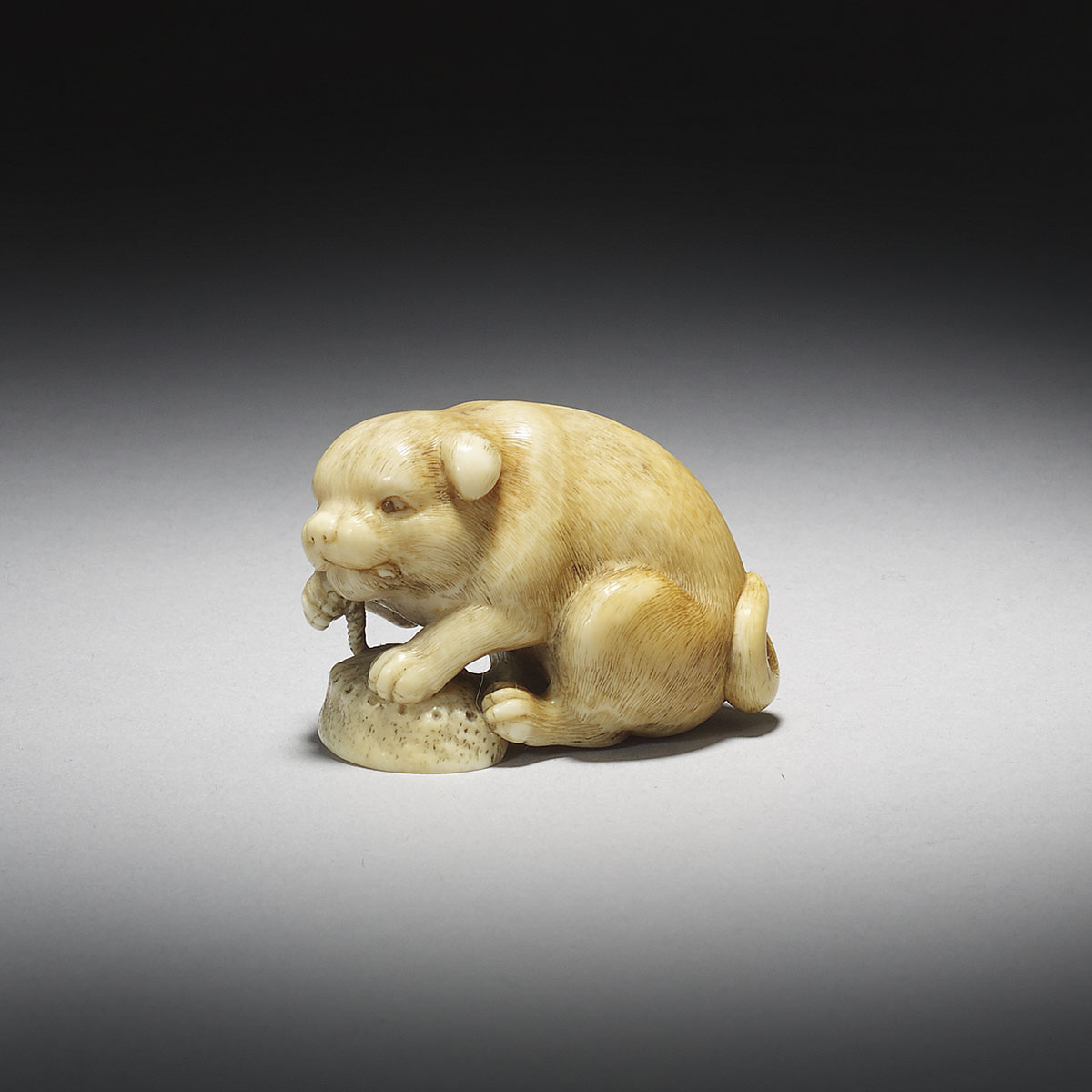 Ivory Netsuke of a Dog with Awabi Shell by Okatomo_MR2919_v1