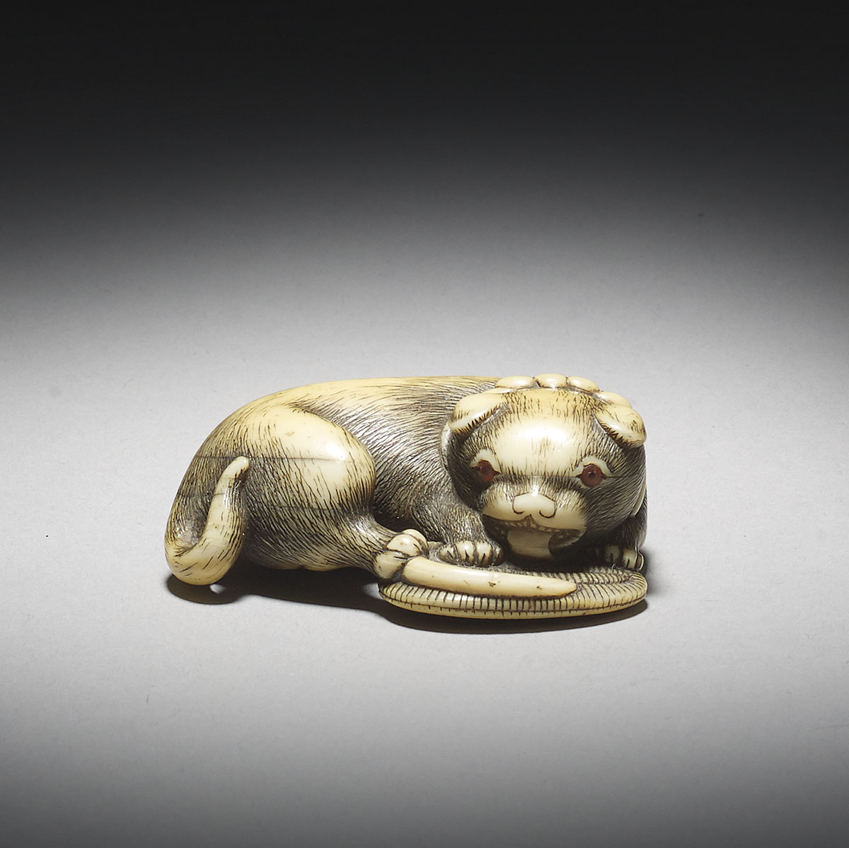 Stained Ivory Netsuke of a Dog Licking a Sandal, Osaka School _MR2921_v1