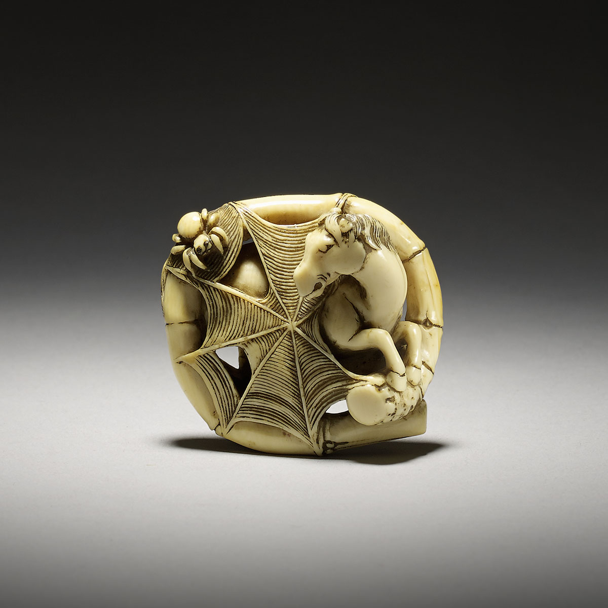 Ivory netsuke of a horse caught in a spider's web, MR3109_v1