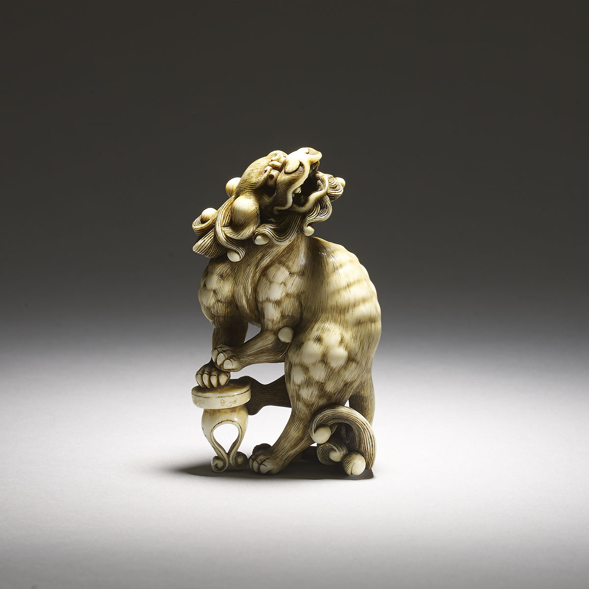 Large netsuke of a shishi, MR2698_v1