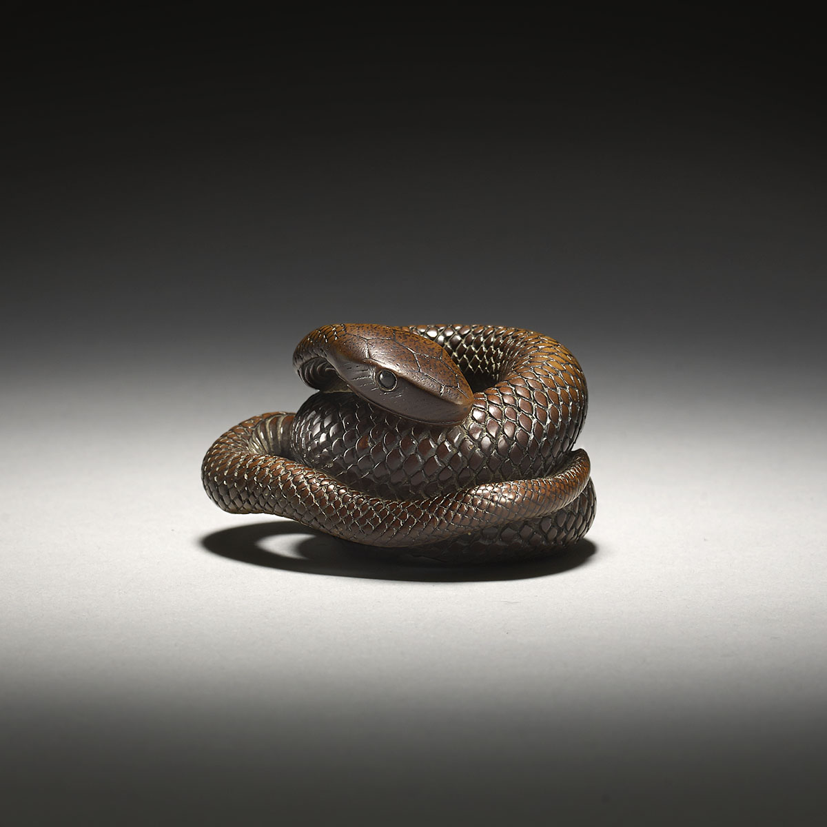 Rare wood netsuke of a coiled snake by Masanao of Kyoto, MR3125_v1