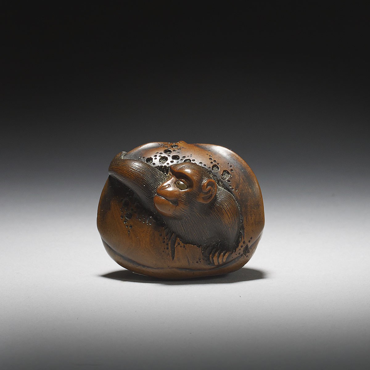 Stained boxwood netsuke of a monkey in a chestnut, circle of Toyomasa, MR2964_v1