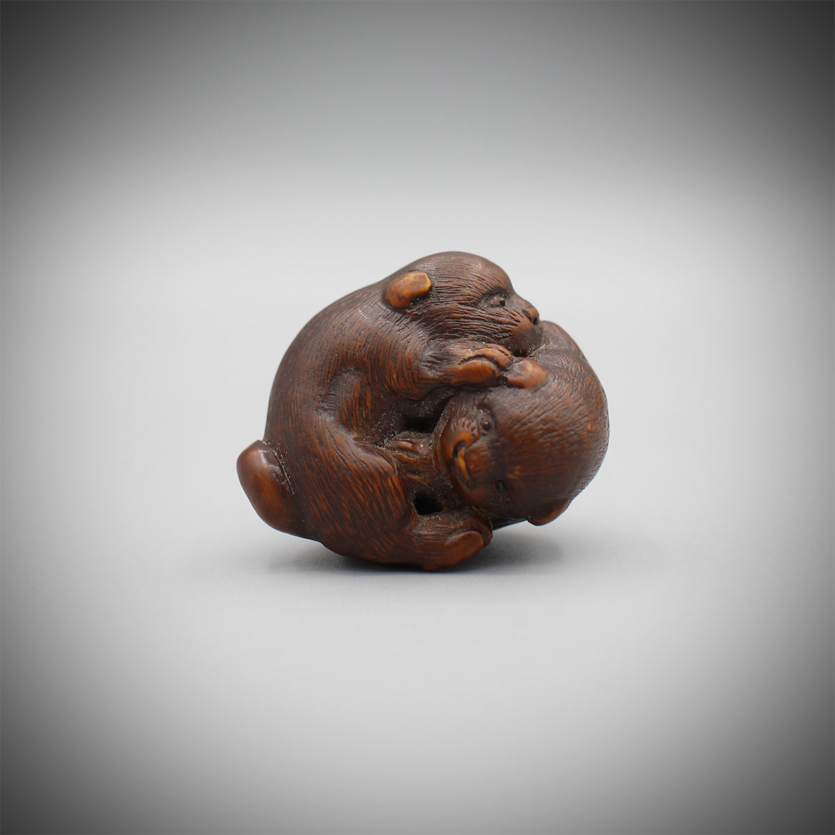 Wood netsuke of two puppies playing, Kokei, MR3146_v1