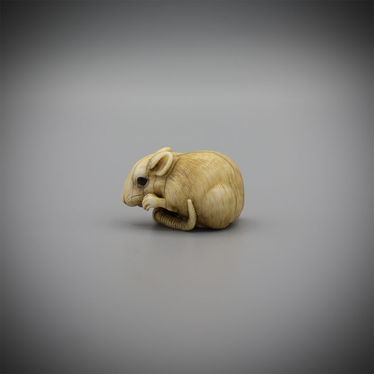 Exceptional ivory rat, by Okakoto, MR3228_v1