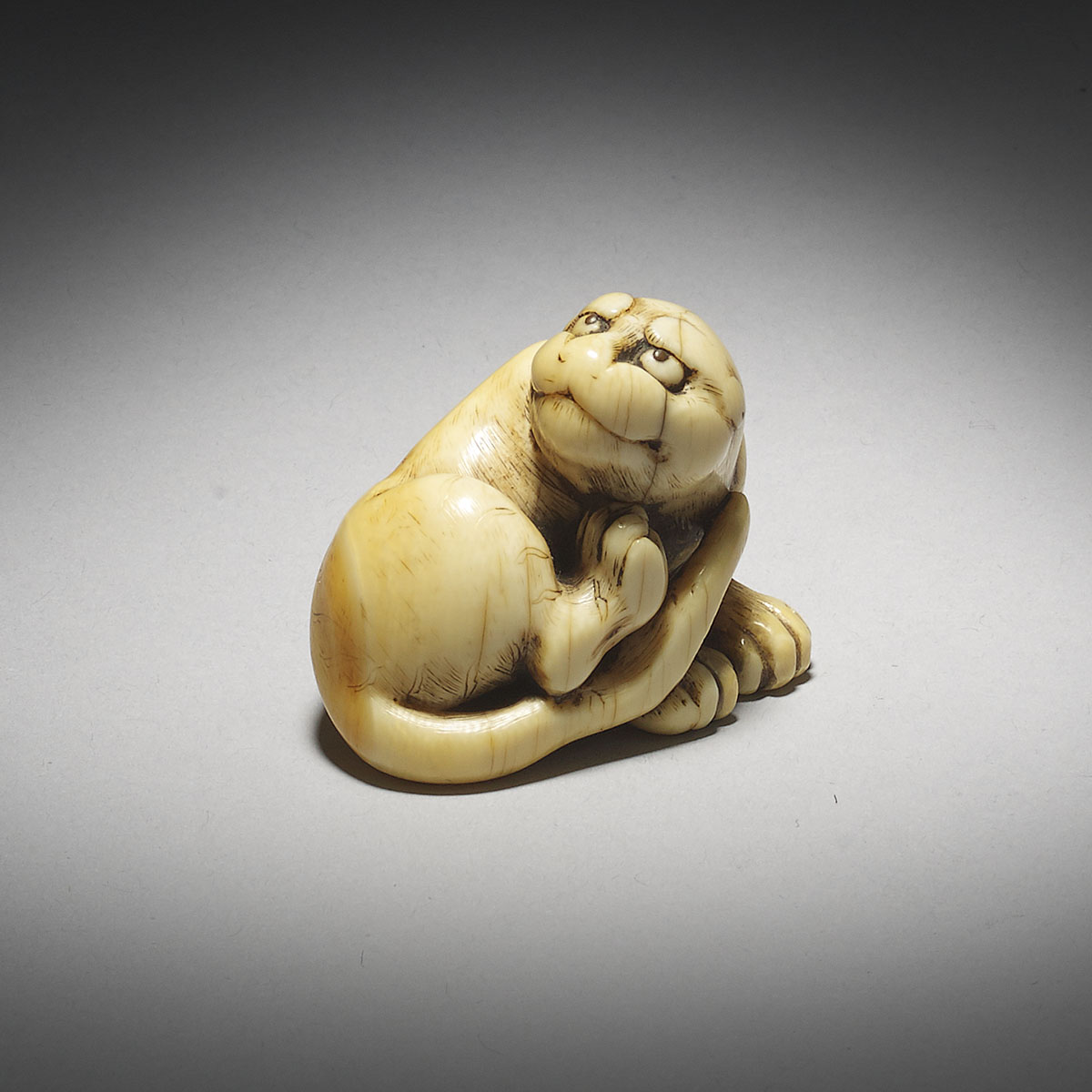 Ivory netsuke of tiger, MR2932_v1