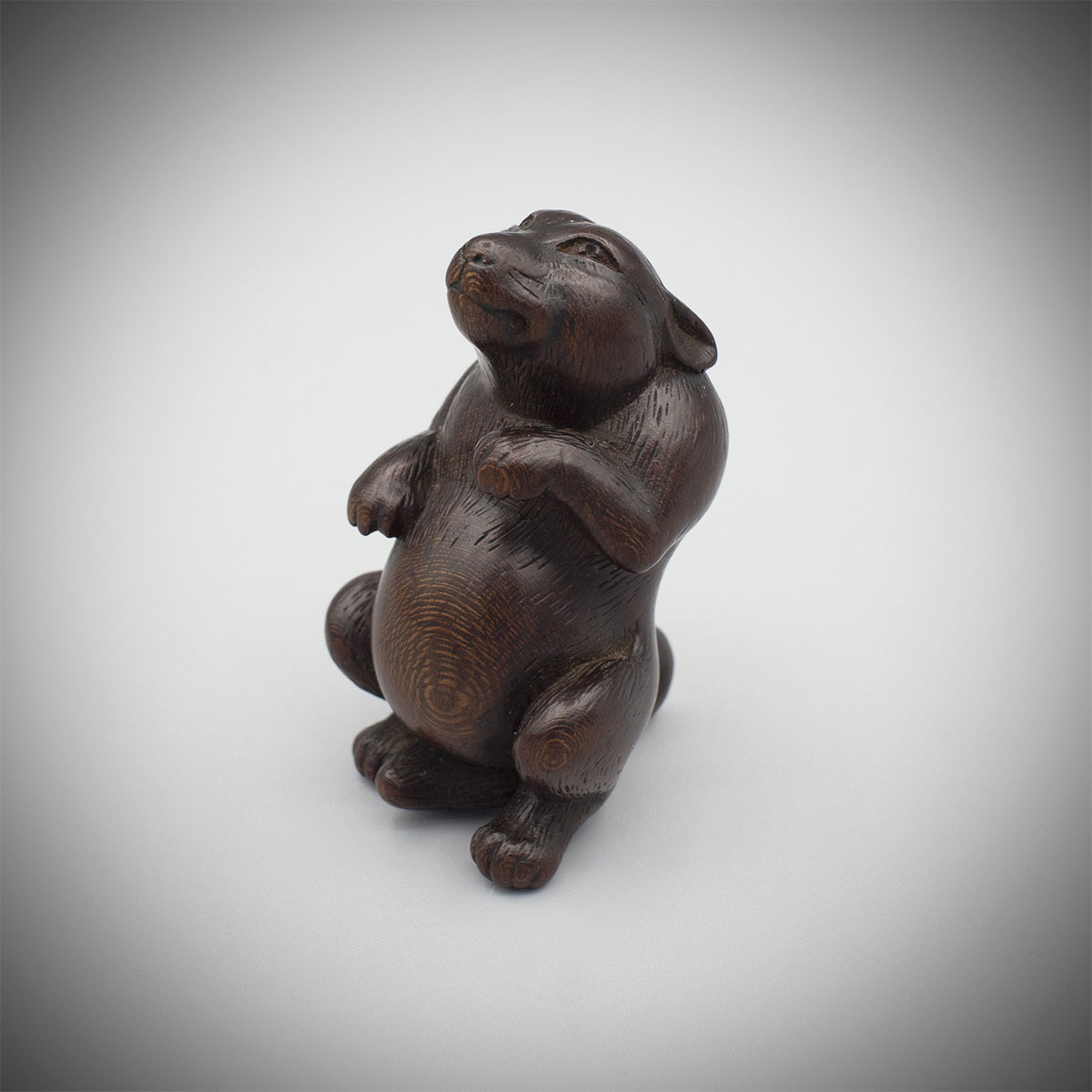 Plum wood netsuke of spirited tanuki, MR3286_v1