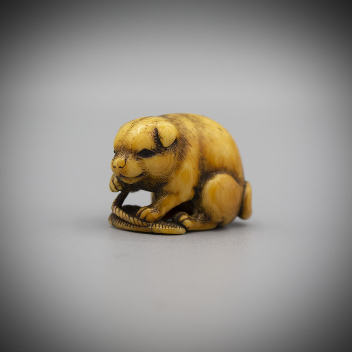 Stained Ivory Netsuke of a dog with a Sandal, by Okatomo, MR3005_V1