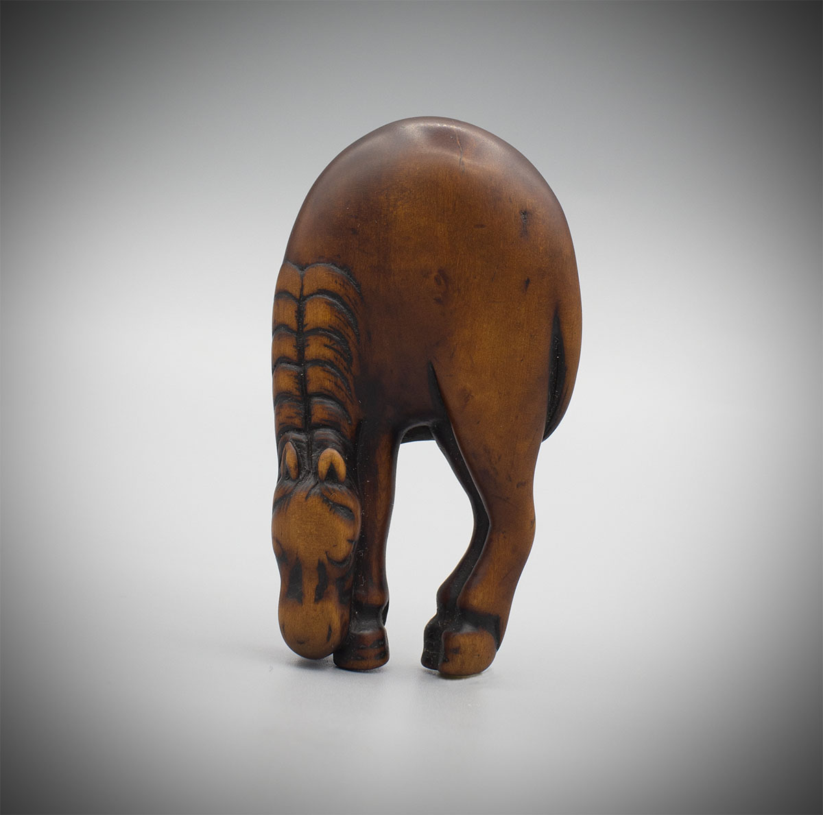 Wood netsuke of a grazing horse, MR2959_v1