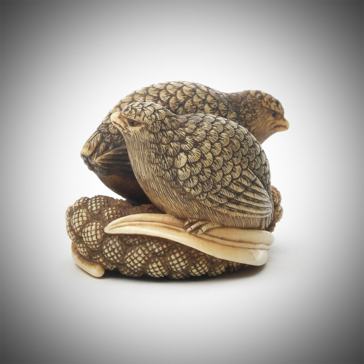 An Ivory Netsuke of Two Quail on Millet by Yamaguchi Okatomo, MR3342_v1