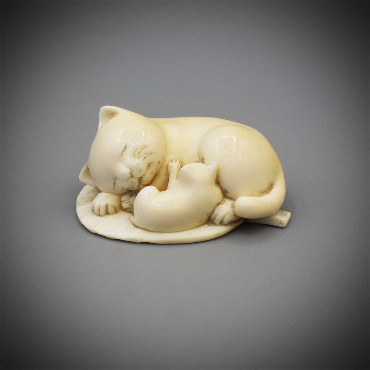 Ivory Netsuke of a Cat and Kitten by Miyagi Chokusai, MR3323_v1-2
