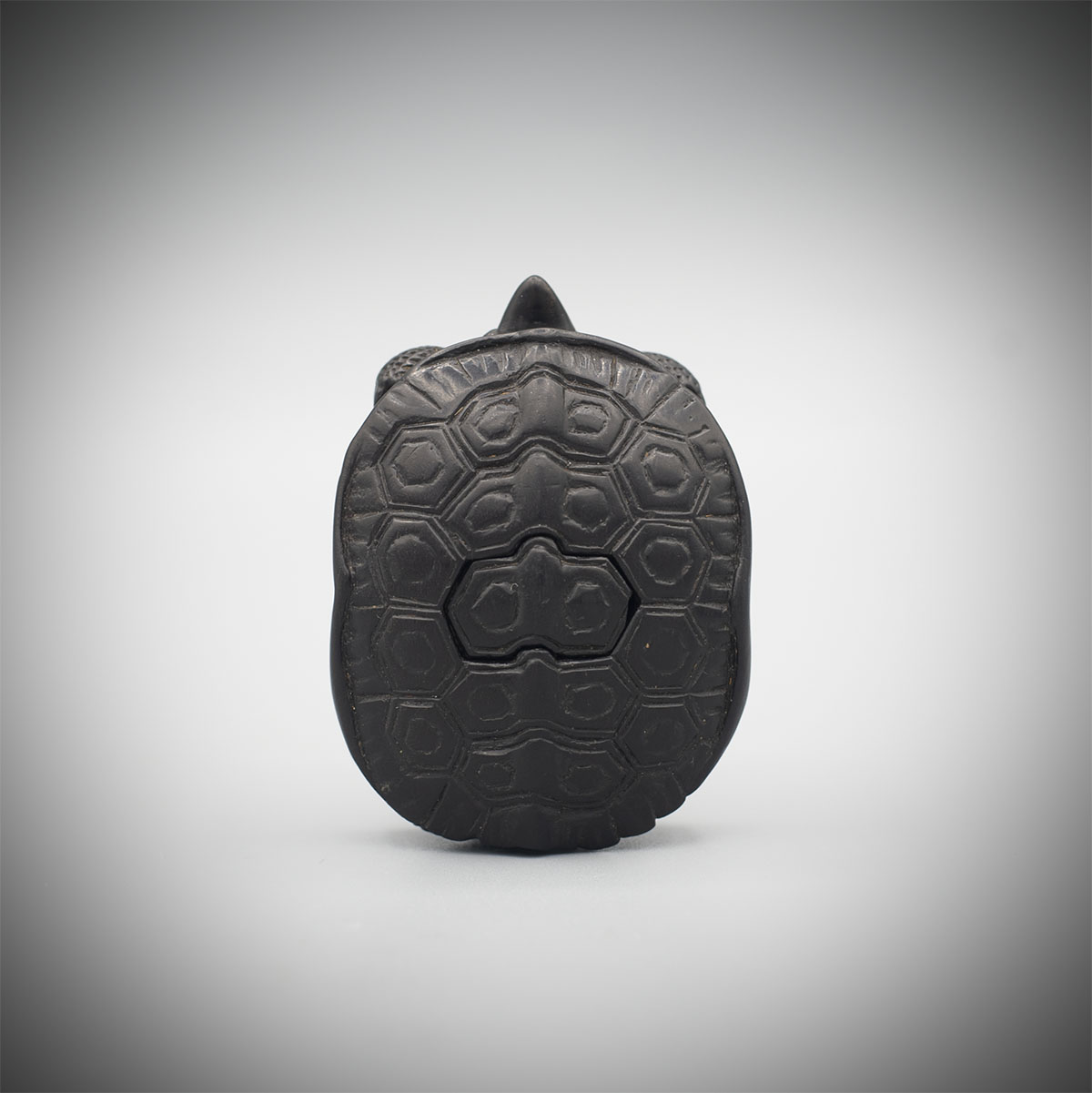Ebony Netsuke of a Turtle, Kiyoho, MR3229_v1