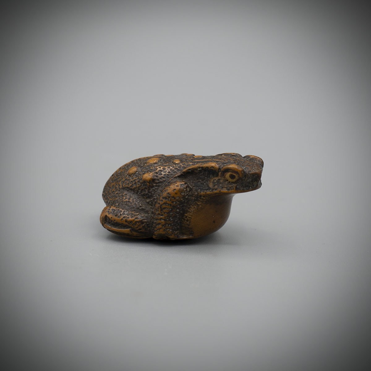 Echizen School Wood Netsuke of a Toad, MR3371_v1