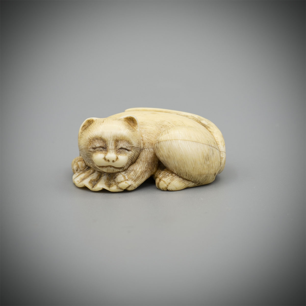 Ivory Netsuke of a Cat on An Open Fan,MR2943_v1