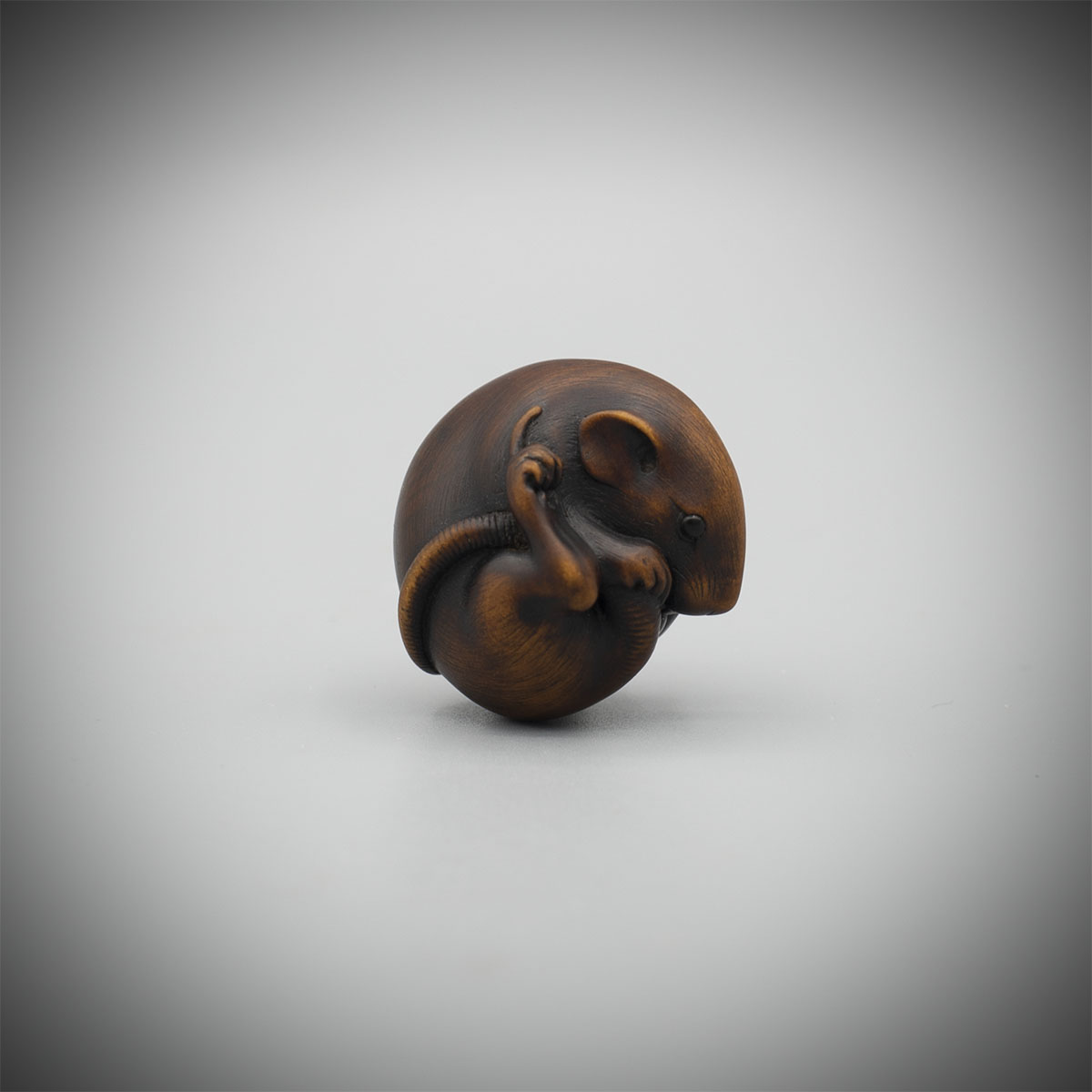 Small But Exquisite Stained Boxwood Netsuke of a Rat by Ikkan(Nagoya, 1817- 1893),MR3302_v1