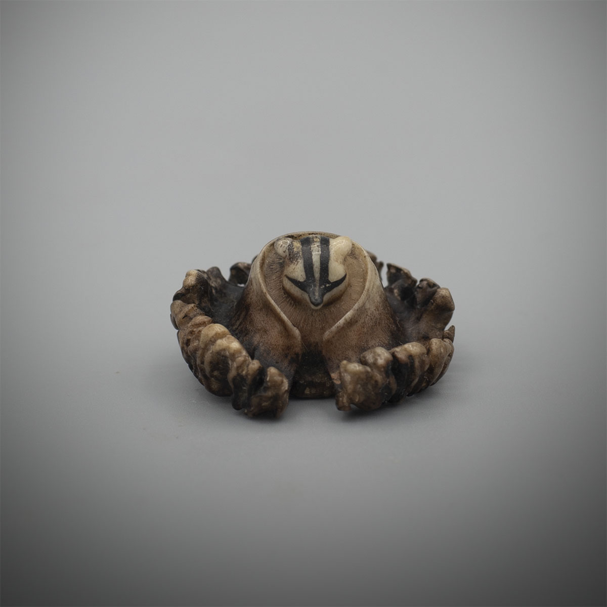 Stag Antler Netsuke of a Seated Tanuki, by Michael Birch, MR3338_v1