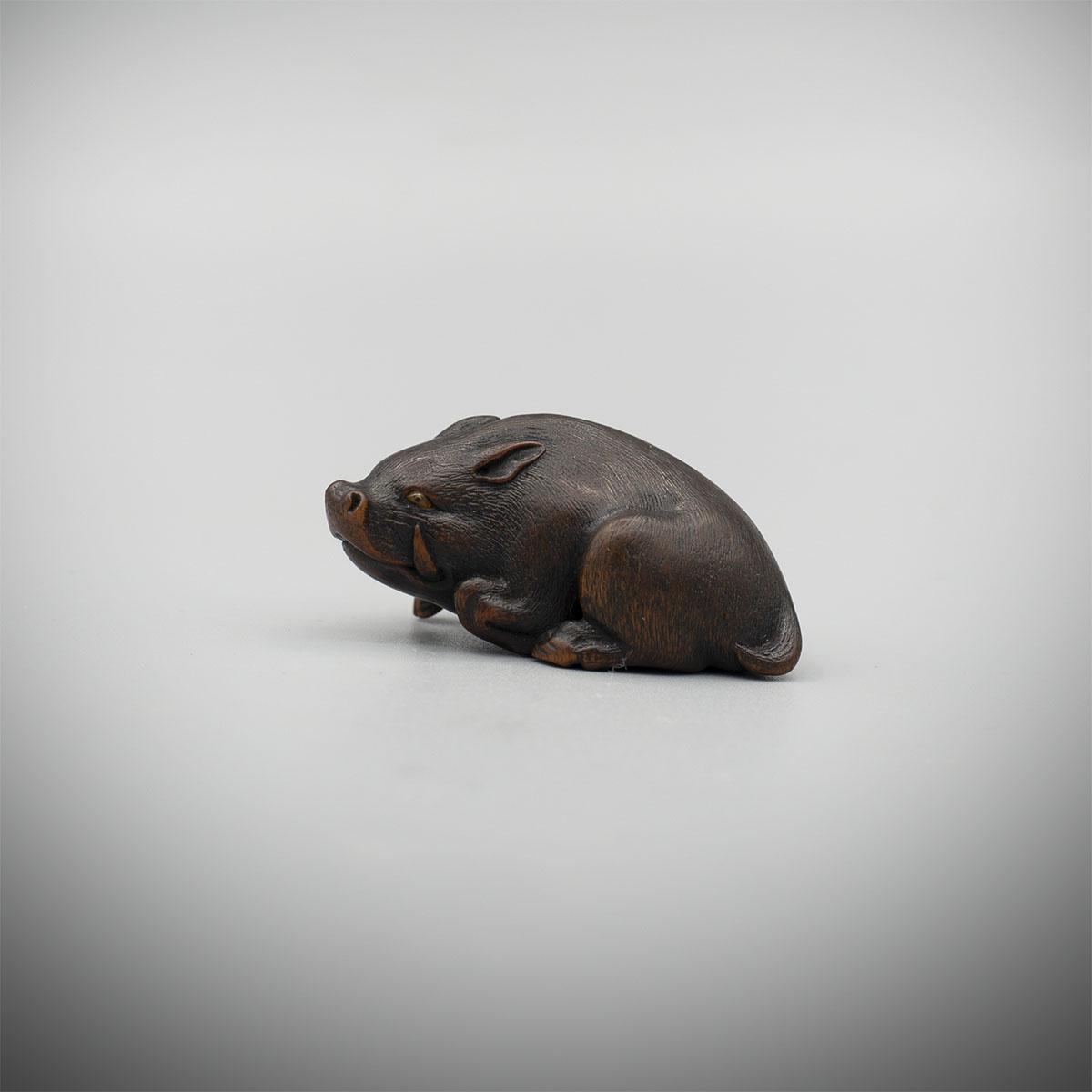 Wood Netsuke of a Resting Boar by Hokudo Itsumin (Active 1830-70), MR3369_v1
