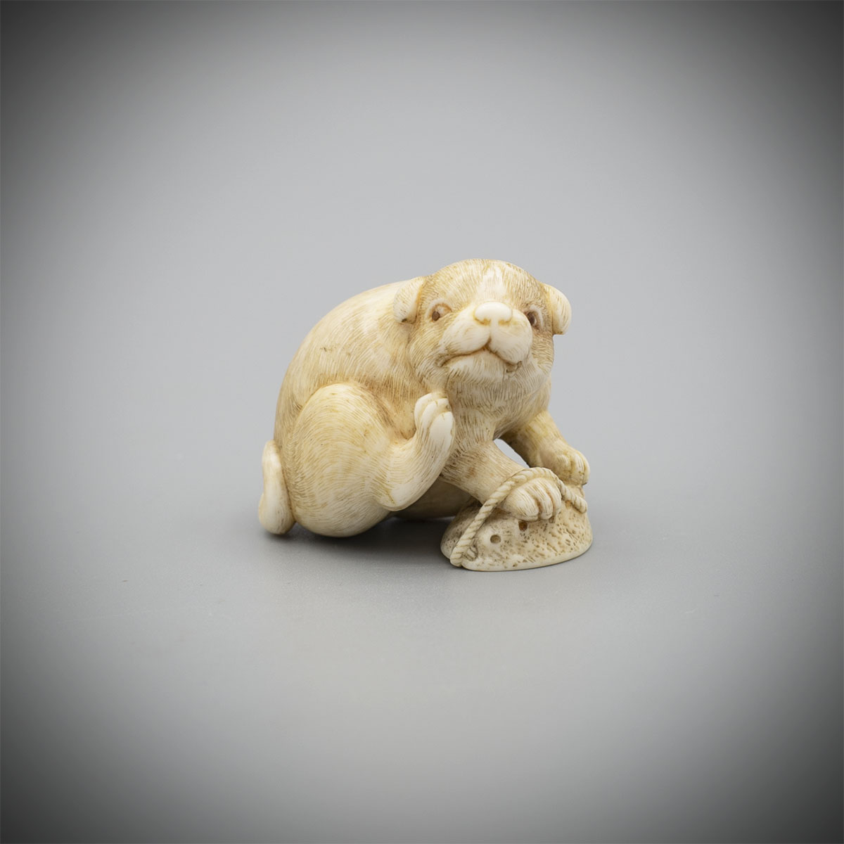 An Ivory Netsuke of a Puppy with Awabi Shell by Okatomo,MR3408_v1