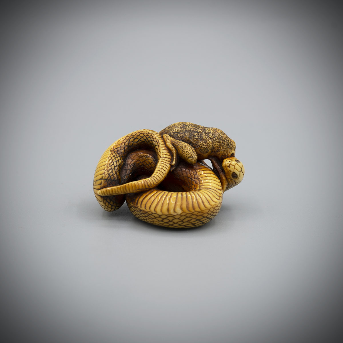 Netsuke of a snake attacking a toad,MR3391_v1