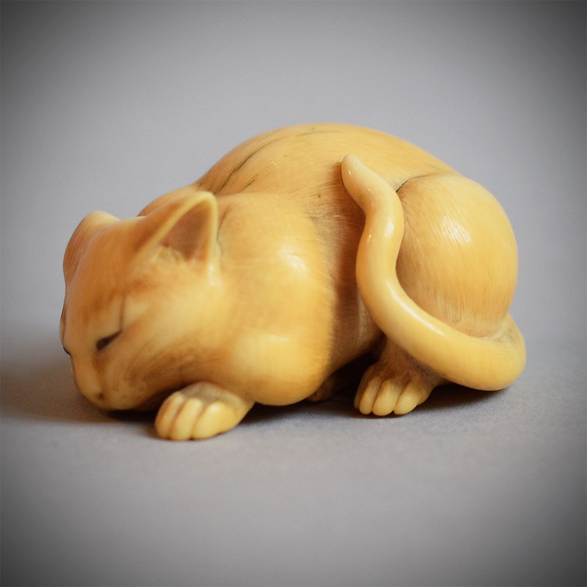 MR825 Ivory Netsuke of a Cat by Kaigyokusai_v.(b).jpg