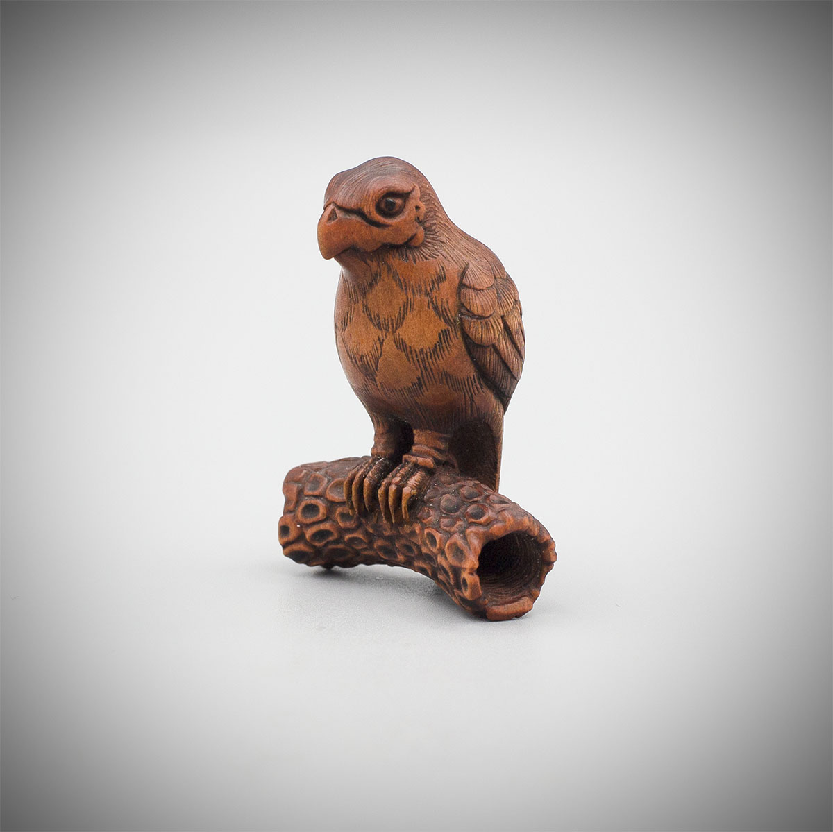 Wood Netsuke of a Kite on a Pine Branch by Gyokko, MR3565_v.1