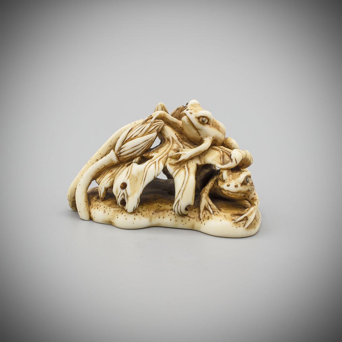 Ivory Netsuke of Two Frogs and Lotus, attributed to Okazaki Rensai, MR3576_v.1-2