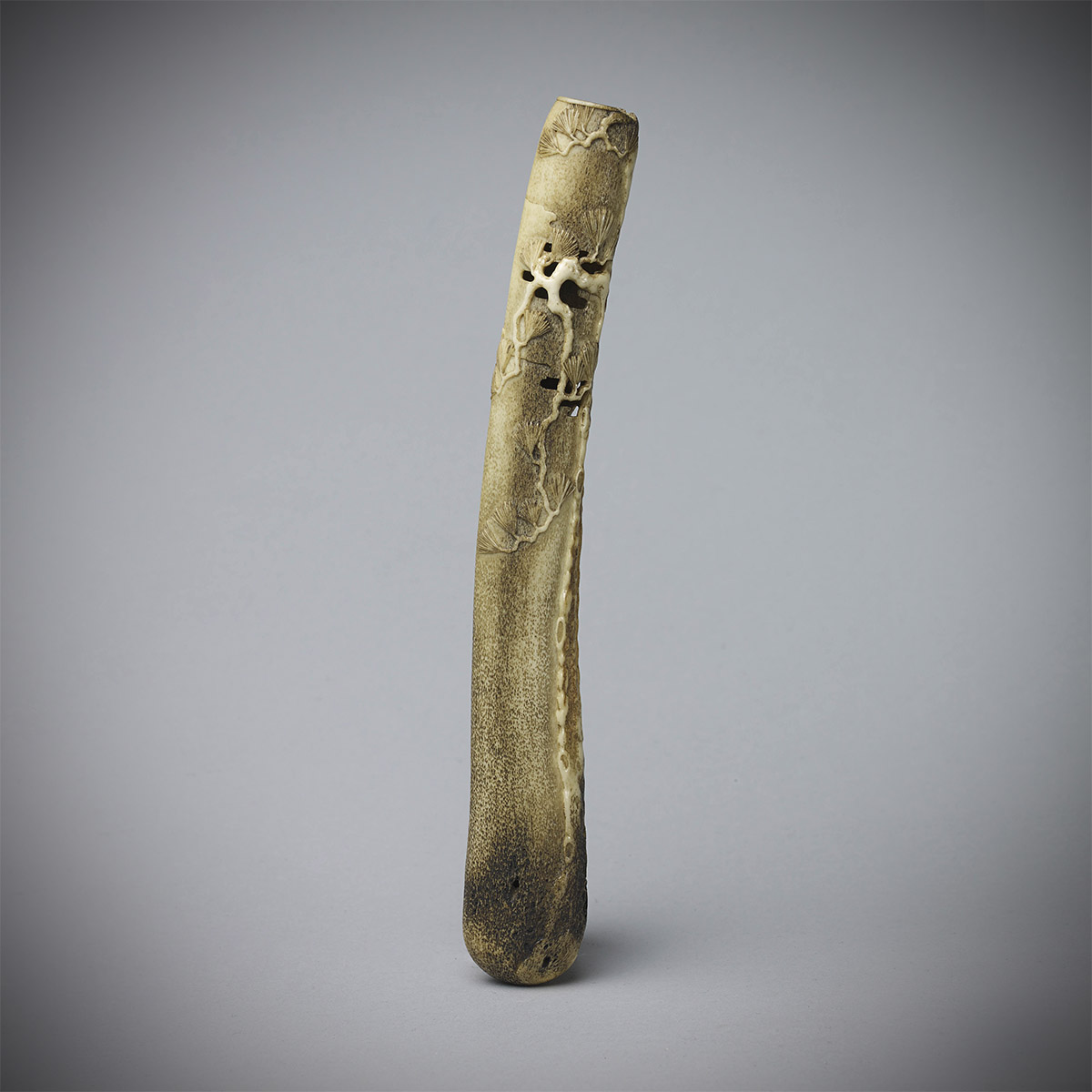 Stag antler pipe case with pine, MR1091_v1