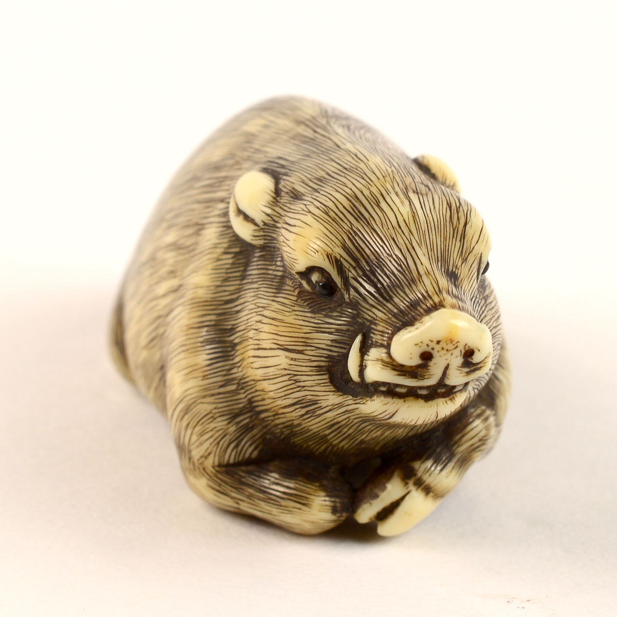 International Netsuke Market - Ivory boar netsuke