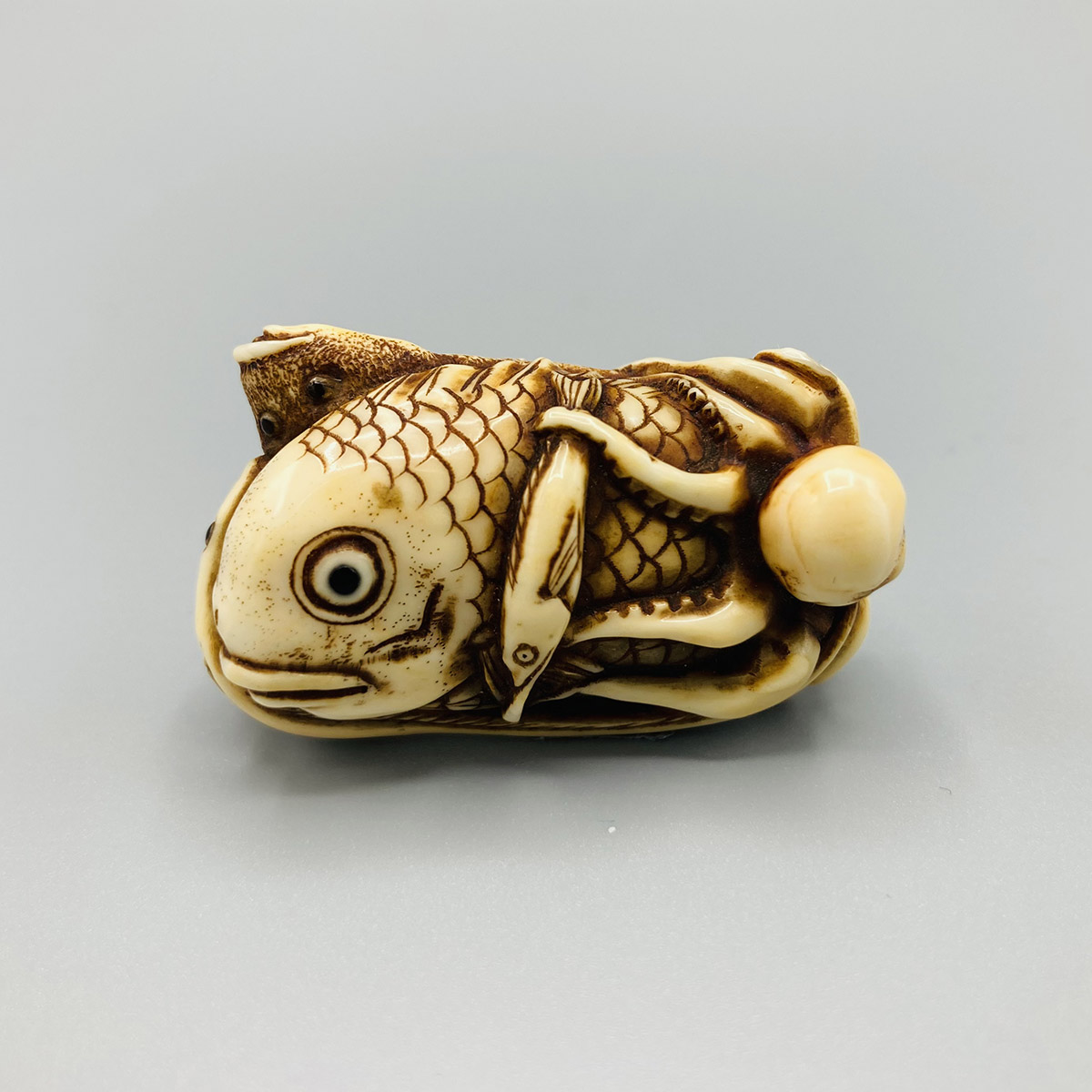 B508 Ikkosai fish