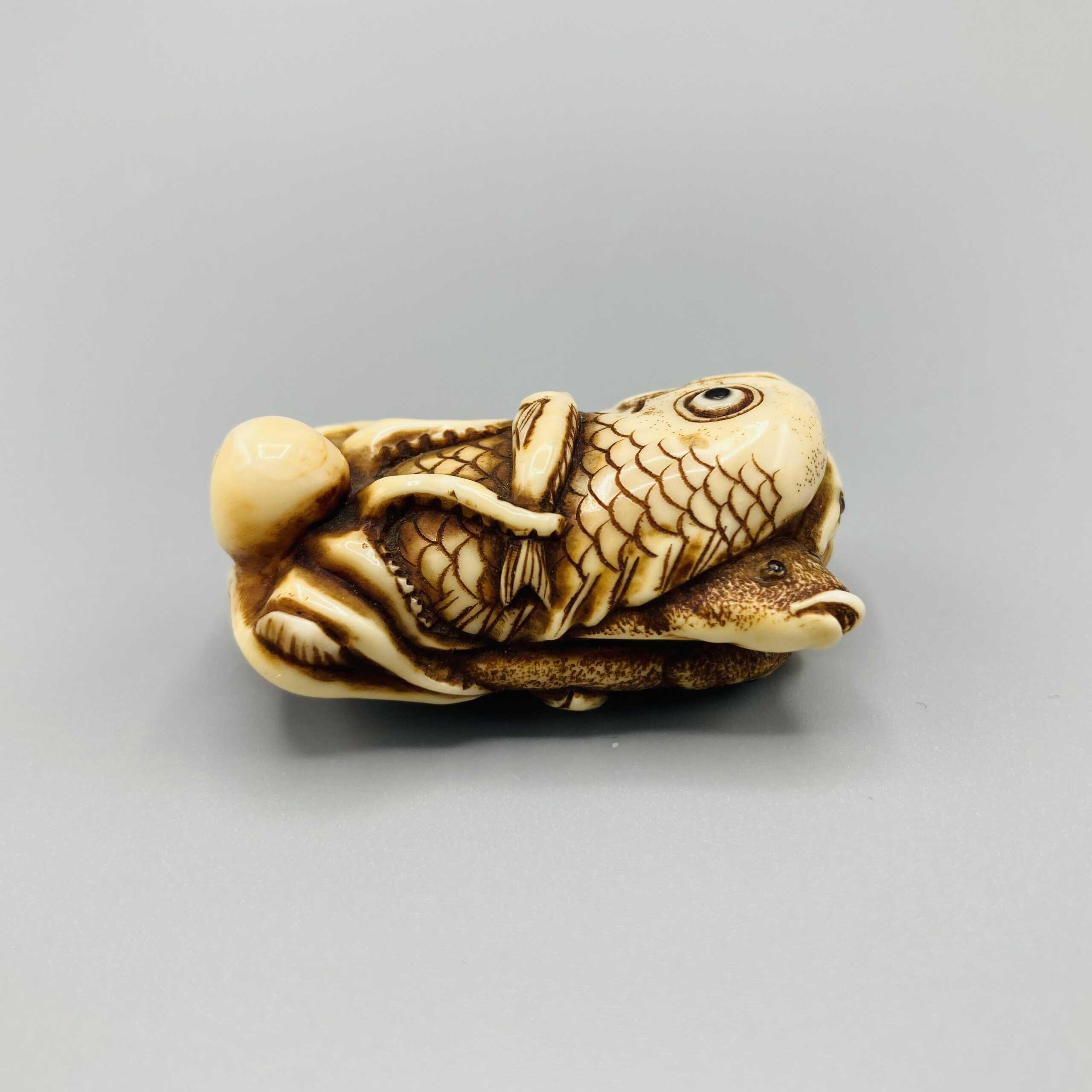 B508 Ikkosai ivory fish netsuke 3
