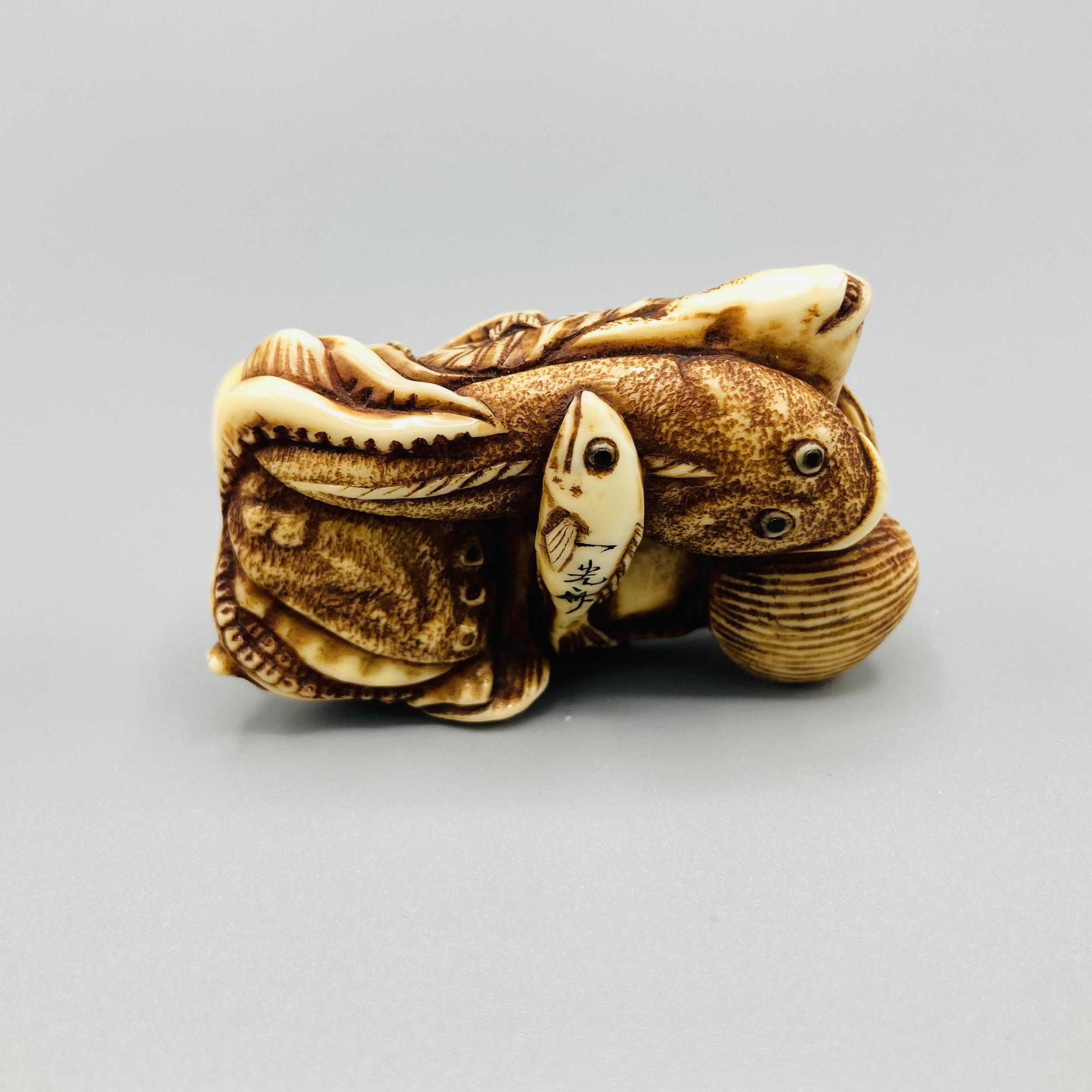 B508 Ikkosai ivory fish netsuke 4
