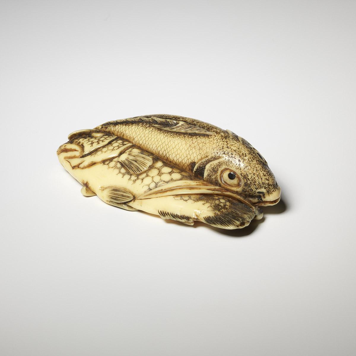 MR95A Fish