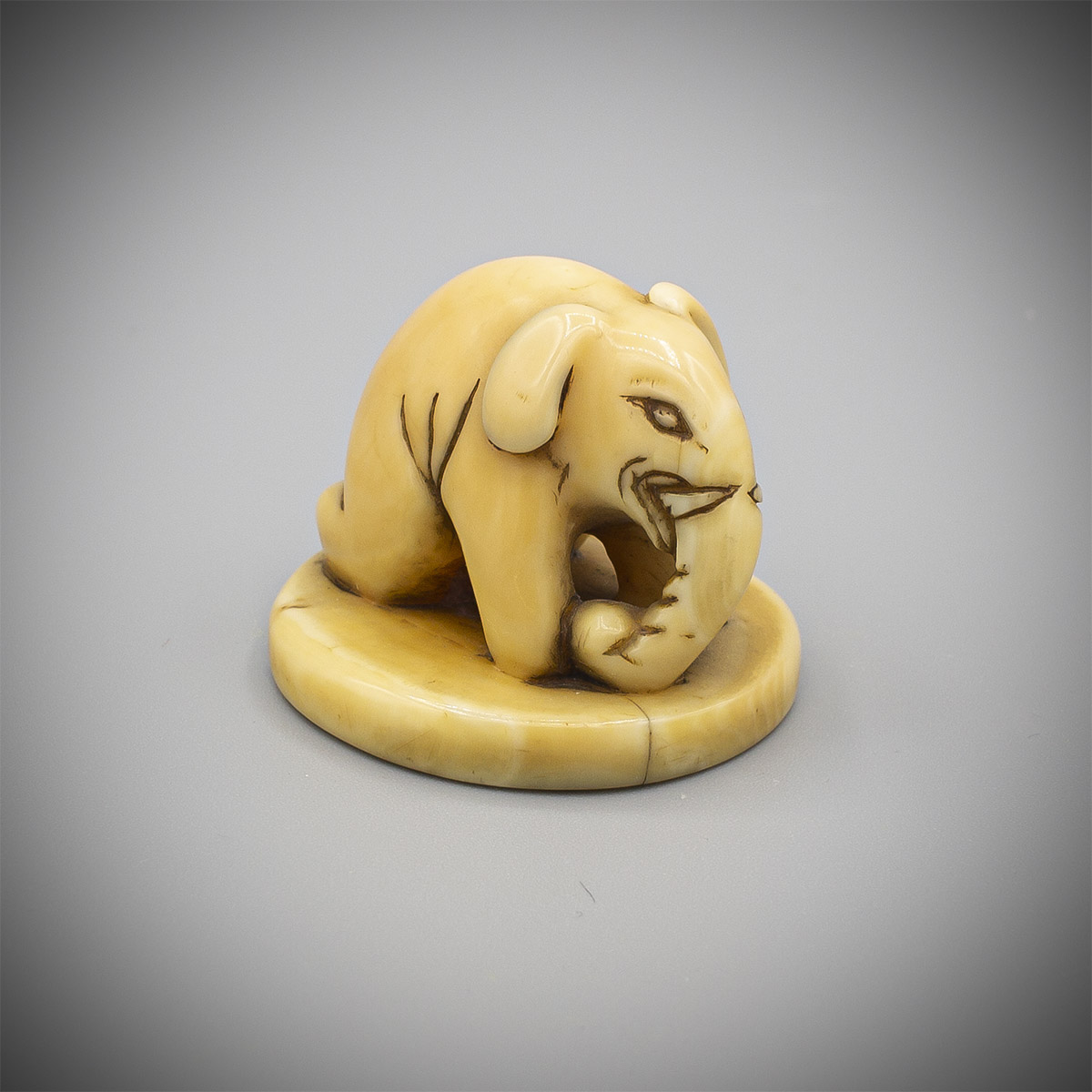 MR3887_v.1.Marine ivory seal netsuke of an elephant
